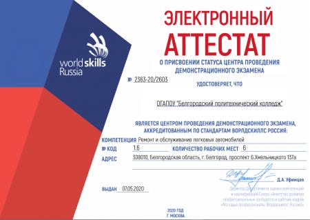 Проведение Демонстрационного экзамена по стандартам Ворлдскиллс Россия