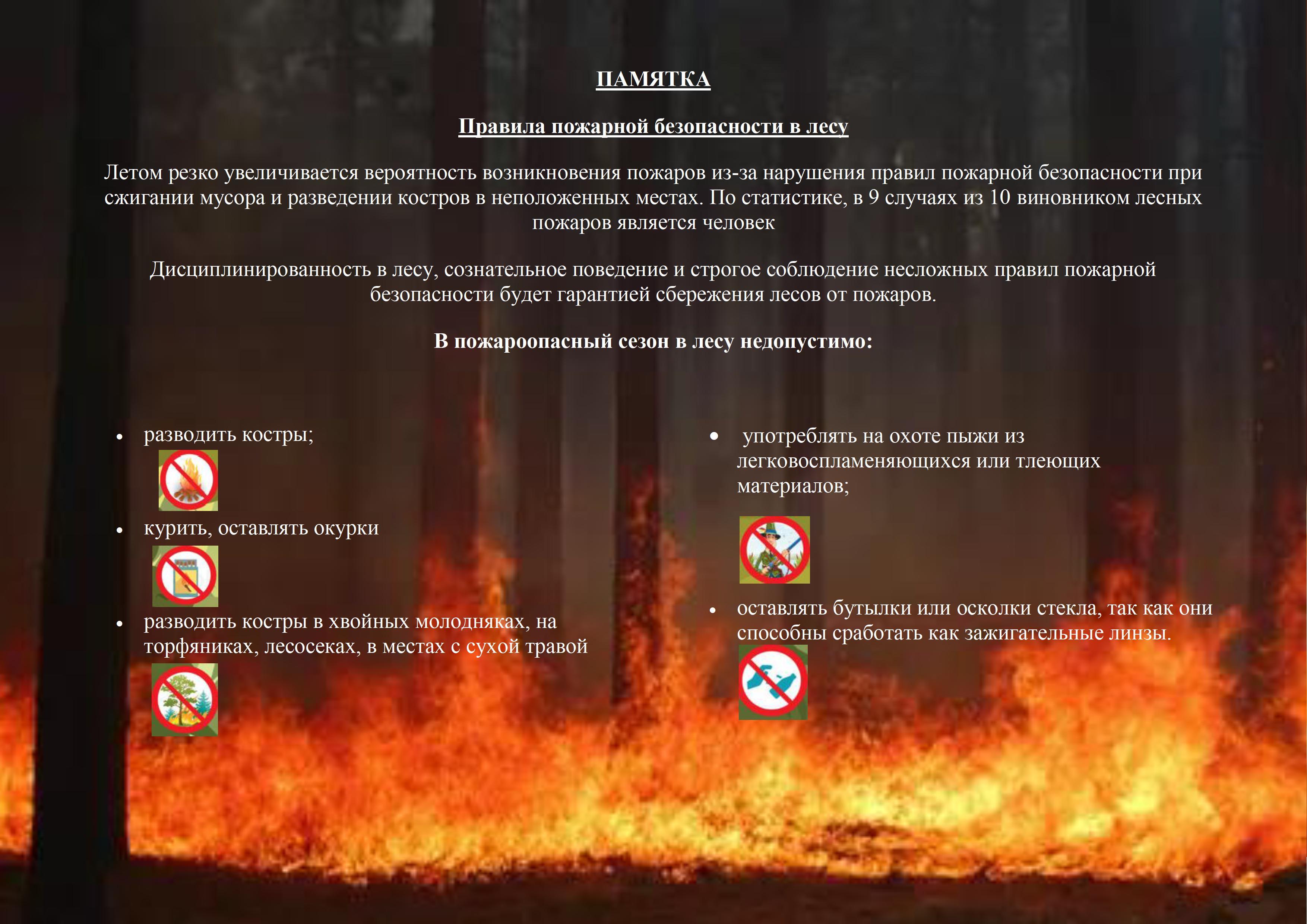 Памятка о мерах пожарной безопасности для обучающихся колледжа